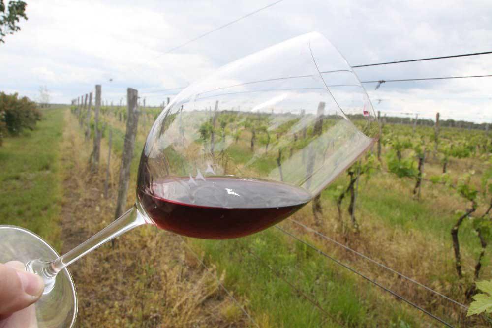 Moldávie svoji vinařskou ikonu intenzivně připravuje