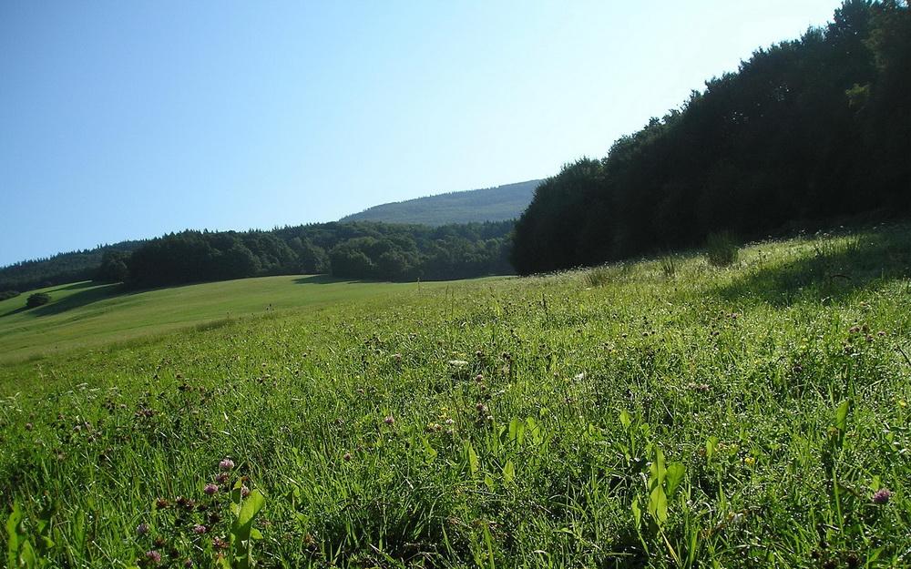 Integrovaný projekt LIFE zaměřený na chráněná území